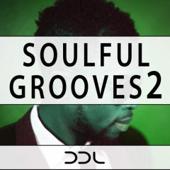 Soulful Grooves 2 <br><br>– 10 Themes (Bass, Chords, Melody, Guitar), Key-Labeled, 10 Full Beat Loops, 31 Beat Parts, 35 MIDI Loops, 226 MB, 24 Bit Wavs.