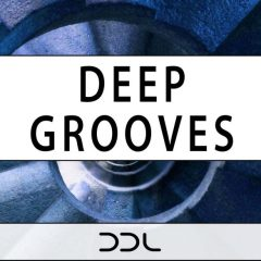Deep Grooves <br><br>– 30 Themes (Beat, Bass, Chord, Percussion), 337 MB, 24 Bit Wavs.
