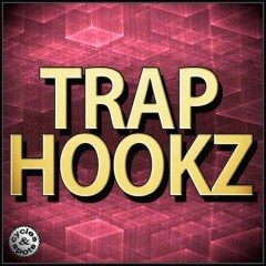 Trap Hookz <br><br>– 10 Contruction Kits (168 Wav Loops & MIDI Files), 501 MB, 24 Bit Wavs.