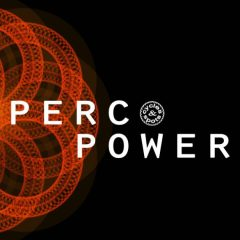 Perc Power <br><br>– 411 Percussion Wav Loops, 2-4 Bars, 476 MB, 24 Bit Wavs.