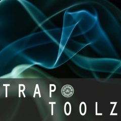 Trap Toolz <br><br>&#8211; 150 One-Shots, 163 Loops, 80 MIDI Files, 312 MB, 24 Bit Wavs.
