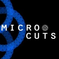 cutted sounds,cut loops,theme loops,tech house loops,deep house loops,swing loops