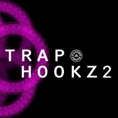 Trap Hookz 2 <br><br>– 10 Construction Kits (150 Wav Loops & MIDI Files), 400 MB, 24 Bit Wavs.