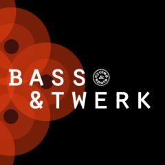 Bass & Twerk <br><br>– 10 Construction Kits (175 Wav Loops & MIDI Files), 350 MB, 24 Bit Wavs.