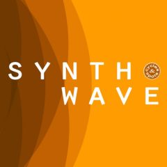Synthwave <br><br>– 20 Themes (Bass Loops, Chord Loops, Melody Loops,Wav+MIDI), 20 Full Beat Loops, 387 MB, 24 Bit Wavs.