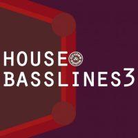 bass loops,bassline samples