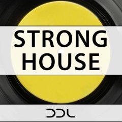 Strong House <br><br>– 10 Themes (132 Wav + MIDI Loops), 238 MB, 24 Bit Wavs.