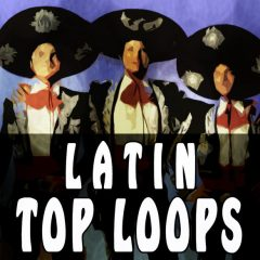 Latin Top Loops <br><br>– 300 Loops (Claves, Cabasa, Maracas and Tambourines), 75-150BPM, 2-4 Bars, 390 MB, 24 Bit Wavs.