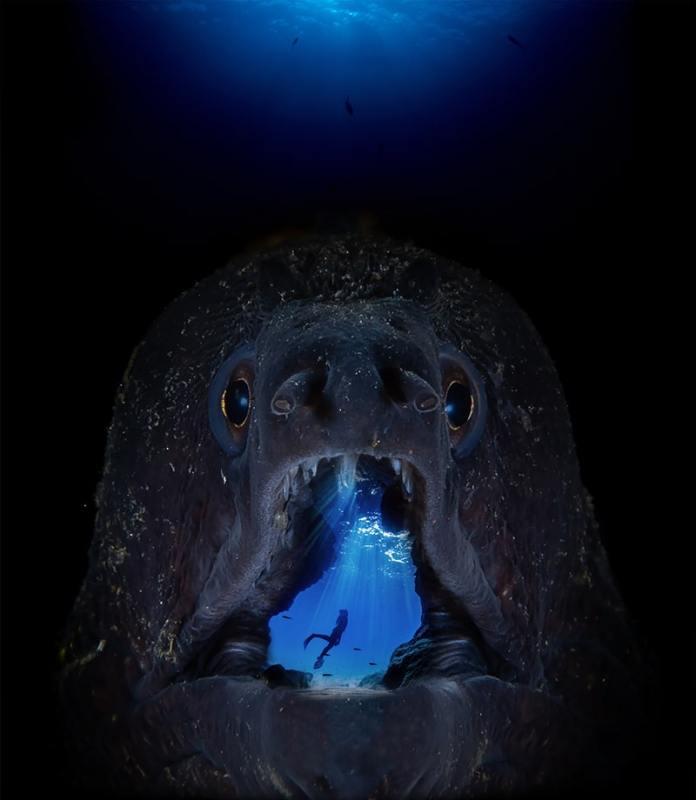 'Digital Ocean Photo Art' Winner Francisco Sedano