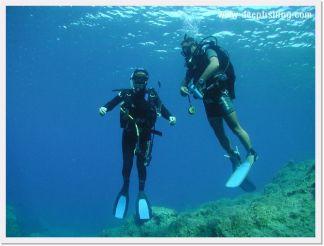 diving14