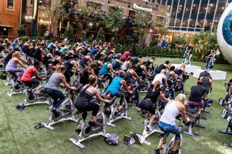 vital-fitness-deepfriedfit-seedallascycle7