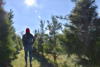 december's 10 things