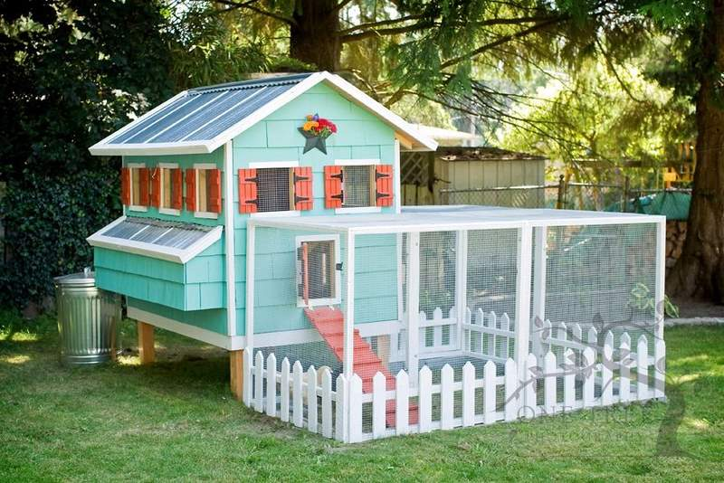 permanent chicken house, chicken coop, egg/nesting  boxes