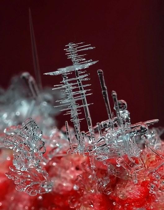 Winter's Hidden Beauty~ The Snowflake, macro photography, snowflake closeup, ice crystal