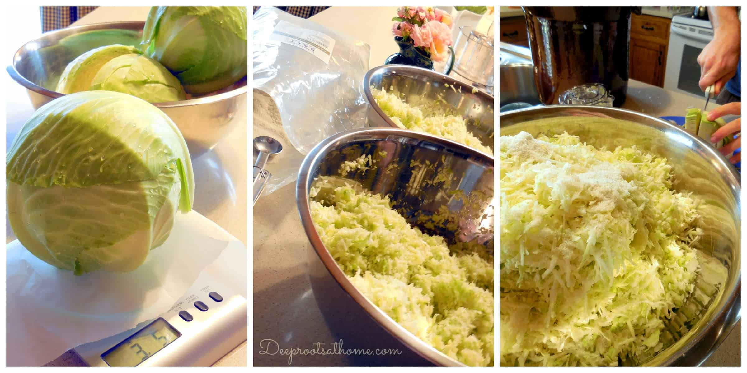 Step-by-Step Process Of Making Sauerkraut In a Crock, DIY, homemade, homemaking, keeper at home, choucroute, Eastern Europe, barrels, kitchen/postal scale, Sandor Katz, quote, books, French Grey salt, Himalayan pink salt, sea salt, minerals, shredded cabbage, chopped cabbage, independence, open crock, Boss Pickler, Fido jar, canning jars, mason jars, Ball jars, salt ratio, bon appetit, Alsace Lorraine, France, cellar, food storage, fermentation, big batches, crunchy, sour, kahm yeast, Holland, caraway seeds, lidded crock, Harsch crock, Gartopf, Germany, grandmothers, probiotic, Reuben sandwiches, flavor, crunchy, beneficial bacteria, bad bacteria, lactobacillus, lactic acid, Swabian village, brine, salt solution, lacto-fermentation, sustainable living, living off the grid, the old ways, thermometer, heated garage, food storage, pantry, kraut, collage