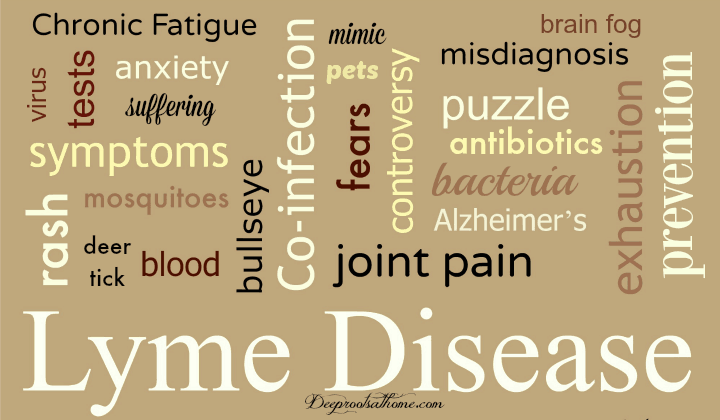 History Of Chronic Pain? Think Lyme Disease, epidemic, researchers, physicians, patients, hope, HIV, breast cancer, Lyme disease crisis, all in your head, CDC, confusion, video, mystery, disclaimer, grief, Igenex Lab, Fry Lab, Advance Labs, bulls-eye rash, painful joints, prostatitis, Lyme-literate medical doctors, LLMDs, Dr. Lee Cowden, Dr. Joseph Burrascano, Dr. Joseph Jemsek, Stephen Harrod Buhner, anti-microbials, suffering, pets, in utero, chronic pain, mimic, multiple sclerosis, Rheumatoid arthritis, Parkinson's, ALS, Alzheimer's, fibromyalgia, Chronic Fatigue Syndrome, epilepsy, symptoms, which come and go: poor memory, exhaustion, brain fog, loss of balance, insomnia, yeast infections, twitches, numbness in extremities, loss of muscle strength, anxiety, back/neck pain, neuropathy, migraines, dizziness, muscle/joint pain, cramps, bladder or testicular pain, urethritis, buzzing, depression, mood swings, sound sensitivity, eye or ear pain, irregular heartbeat, Borrelia burgdorferi, bacterial infection, co-infection, Under Our Skin 1, Babesia, Rickettsia, Bartonella, Ehrlichia, or Epstein-Barr virus, spirochete, diagnosis, misdiagnosis, blood, mosquito, ticks, deer tick, wood tick, woods, grass, testing labs,