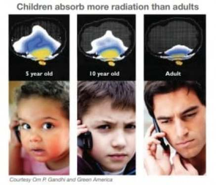 9 Facts You Need To Know About Wireless Amp Your Child S Brain