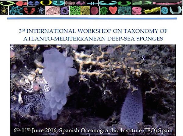 Taxonomy Workshop: Atlanto-Mediterranean Deep-Sea Sponges