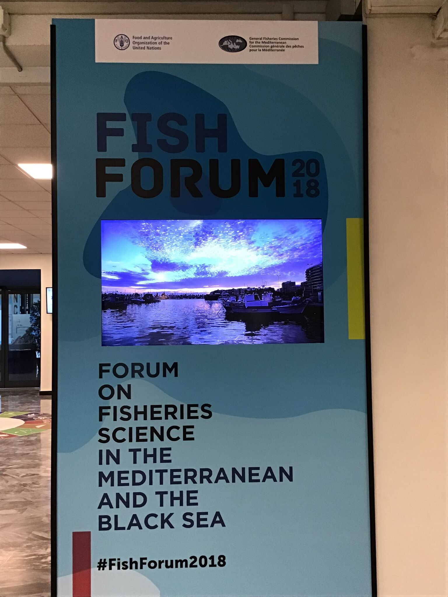 FishForum 2018, SponGES