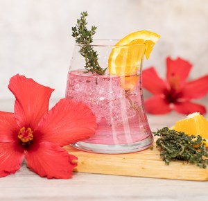 Recipe - Ruby Hibiscus G&T Cocktail