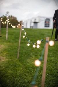 20 Stunning Rustic Edison Bulbs Wedding Decor Ideas | Deer ...