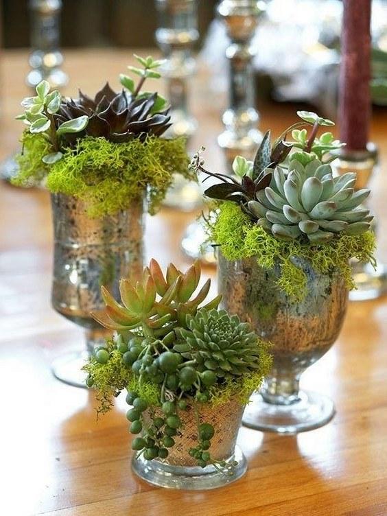 45 Rustic Moss Decor Ideas for A Nature Wedding  Deer