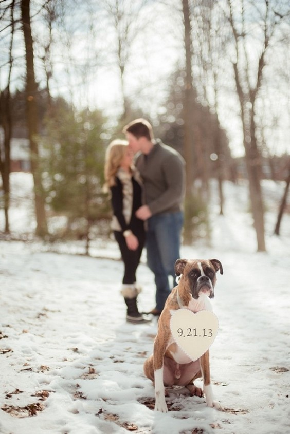 30 Winter Engagement Photo Ideas to Warm Your Heart  Deer