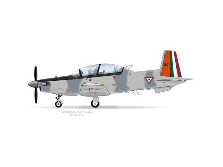 FAM T-6C+