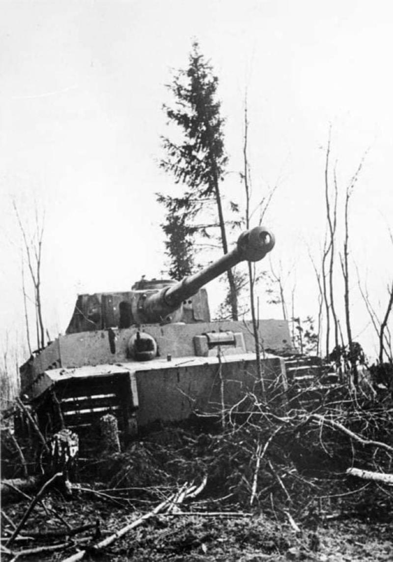 Tiger Tank Leningrad