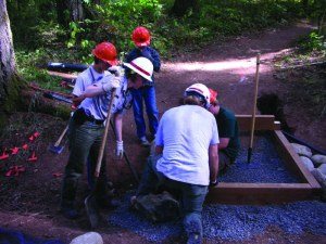 A Eugene, Ore., local Boy Scout troop assists with constructing trail steps in Schwarz Campground at Dorena Reservoir on National Public Lands Day, the nation's largest annual, single-day volunteer restoration effort for America's public lands, Sept. 29, 2012. USACE photo