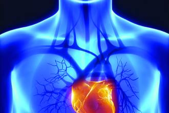 cardiovascular research