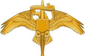 MARSOC insignia