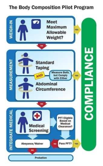 Body-Comp-Graphic