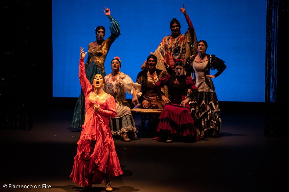 Manuel Liñán ¡Viva! - Flamenco on Fire