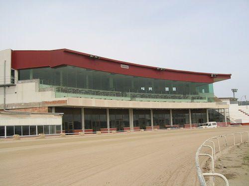 El Consell rebutja ampliar l'hipòdrom de Manacor
