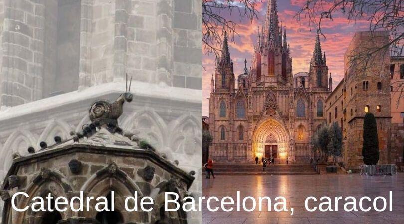 Caracol de la catedral de Barcelona