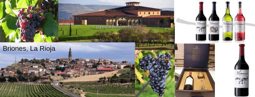 museo del vino vivanco opiniones
