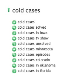 SEO-Results - Cold Cases Keyword suggestions