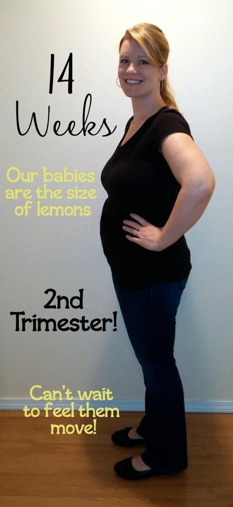 14 Week Pregnancy Update | Defying Lupus