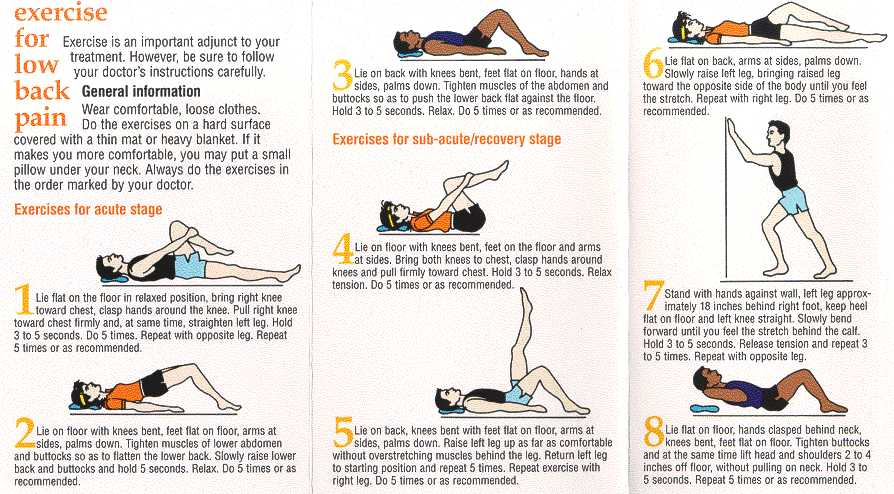 exercises low back pain2