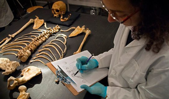 How Do I Become A Forensic Anthropologist