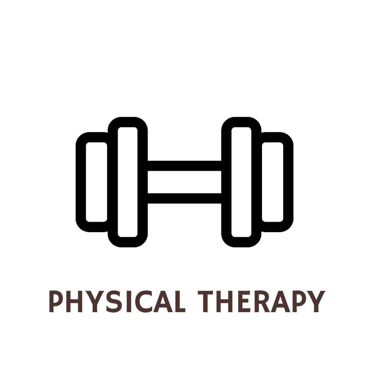 What Can I Do With A Degree In Physical Therapy