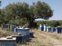 Griekse bijenkasten