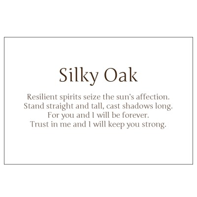 Poem from Silky Oak