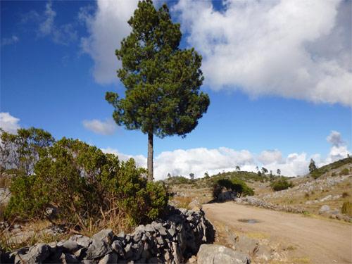 Ruta hacia Laguna Magdalena, Comunidad Magdalena, Chiantla, Huehuetenango