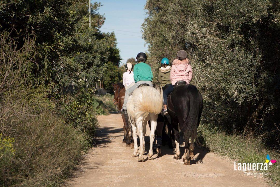 Paseo a caballo - valencia