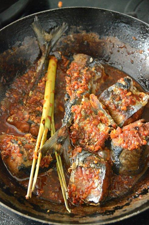 Ikan-belado