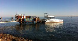 Namibia Katamaran Cruise mit Laramon Tours in Walfishbay