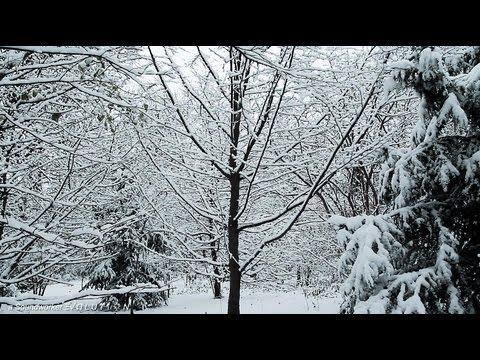 winter schnee hoeren sehen und r