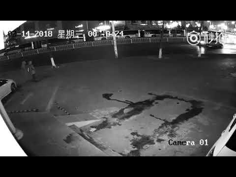 zwei chinesische profieinbrecher